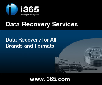 Seagate i365 Data Recovery Form